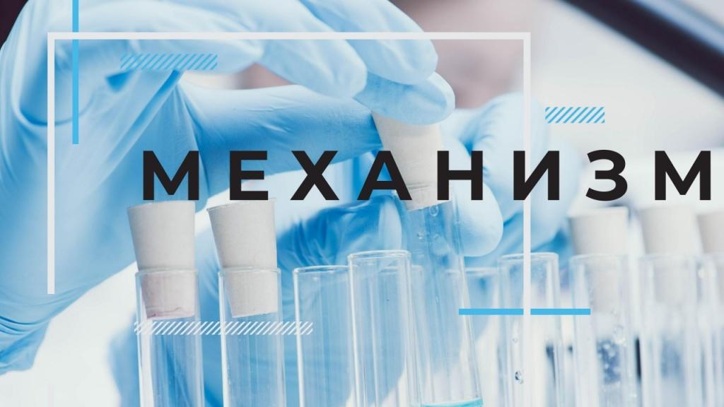 Gesztenye tinktúra a prosztatitisből Antioxidánsok prosztatitis
